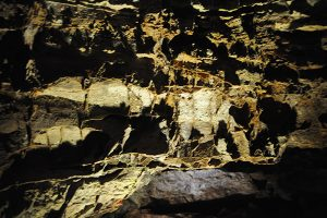 Boxwork formation on a cave wall in Wind Cave National Park.
